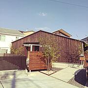 DIY/ラティス/シューズクロゼット/硅藻土の壁/Entranceに関連する他の写真