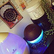 フェイクグリーン/棚の上/空気清浄機/加湿器/My Shelf…などのインテリア実例