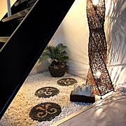 室内ガーデンのインテリア実例写真