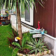 フラミンゴ大好きのインテリア実例写真