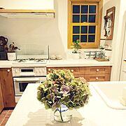 リンナイ/ブラン/blanc/上げ下げ窓/アンティーク/アイランドキッチン…などのインテリア実例