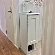 DIY/IKEAの帽子ラック/ペンキ塗り/IKEAのアウトレット扉/Bathroom…などのインテリア実例