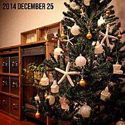 クリスマスツリー/マリンテイスト/クリスマス/収納ラック/DIY/RC湘南LOVE♡…などのインテリア実例