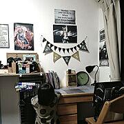 ペイント/廃材/しっくい/RC兵庫支部/おままごとキッチン/DIY…などに関連する他の写真