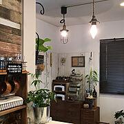 建売の家/昭和レトロ/観葉植物のある暮らし/建売住宅/アンティーク/建売り一戸建て…などのインテリア実例