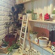 日本家屋/木の家/DIY女子部/昭和ポンコツチーム/ひな祭り/Re壁(リカベ)…などに関連する他の写真