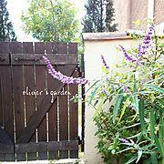 olivier's garden/RC九州支部/カフェ風/Entrance…などのインテリア実例