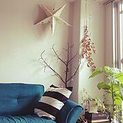 ワンルーム/ドライフラワー/マライカ/一人暮らし/6畳/植物のある暮らし…などのインテリア実例