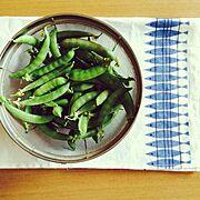 旬の野菜のインテリア実例写真