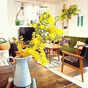 IKEA/カリモク60/インスタ→hirooomiii/花/ミモザ/Lounge…などのインテリア実例
