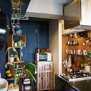 手作り棚/ダイソー/ニトリ/DIY/カメラ/Francfranc…などのインテリア実例