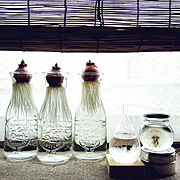 テンポドロップミニ/ohigeちゃんの綿毛のハーバリウム/off&on/ヒヤシンス水耕栽培…などのインテリア実例