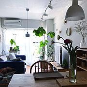 北欧スタイル/セルフリフォーム/漆喰壁/IKEAカーテン/ウンベラータ/DIY…などのインテリア実例