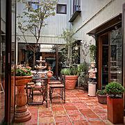 ガーデニング/ホームリゾート/中庭のある家/田舎暮らし/テラコッタタイル/ラベンダー…などのインテリア実例
