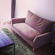 シンプルライフ/ニトリ/ソファ/Lounge…などのインテリア実例