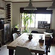 セリアレンガ/おはようございます(^ー^*)/いいね&フォローありがとうございます☆/朝一番のキッチンからの眺めが癒されます❤…などのインテリア実例