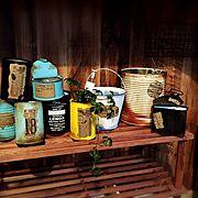 植物/RC福島支部/リメ缶/シュガーバイン/久々の投稿♡/My Shelf…などのインテリア実例
