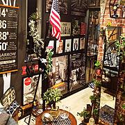 ZARAHOME/観葉植物/IKEA/IGと同じPIC/ニトリ/雑貨…などに関連する他の写真