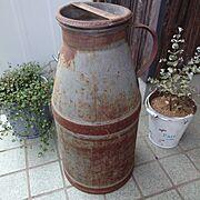 ワイヤープランツ/ユーカリの木/ミルク缶/Entrance…などのインテリア実例