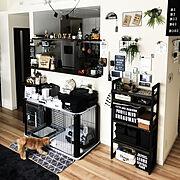 愛犬♡/Buzz ♂/犬との暮らし/ワンコのいる生活/Instagram→dct.tama/黒が好き♥…などのインテリア実例