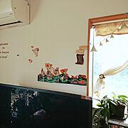ハッピーセットおまけ/卵の殻リメイク/多肉ちゃん/セダム/転写シール/On Walls…などに関連する他の写真