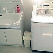 ごくごく、普通/生活感をなくしたい/生活感たっぷり/清潔感のある場所にしたい/Panasonic洗濯機…などのインテリア実例