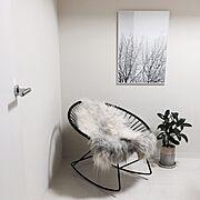 定点観測/いなざうるす屋さんニコアンド/螺旋階段/IKEA/いなざうるす屋さん/水仙…などに関連する他の写真