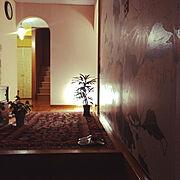 IKEA/IKEAのフロアライト/IKEAのフロアーランプ/壁紙屋本舗/玄関にラグ…などのインテリア実例
