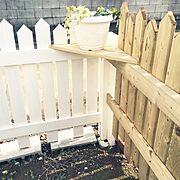 お気に入り♡/グリーンのある暮らし/お庭作り始めました♡/アメブロやってます♥/DIY…などのインテリア実例
