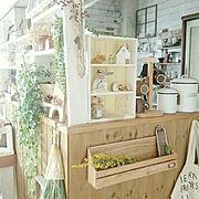 昭和ポンコツチーム/ドライフラワー/DIY女子部/自分らしく/木の家…などに関連する他の写真