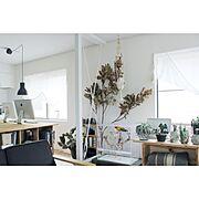 棚DIY/SPF材/DIY/男前も可愛いも好き/見せる収納/Kitchen…などに関連する他の写真