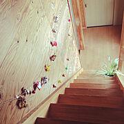 注文住宅/新築一戸建て/マイホーム/マイホーム建築記録/子供と暮らす/新居楽しみ…などに関連する他の写真