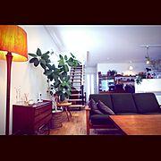 北欧ヴィンテージ/グリーンのある暮らし/TRUCK/階段/Lounge…などのインテリア実例