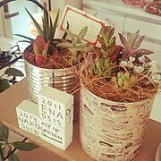 手作り/リメイク/多肉植物/100均/Lounge…などのインテリア実例