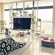 IKEA/建築家/無垢フローリング/こどもと暮らす/トロファスト風/100均…などに関連する他の写真