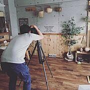 ダイニングテーブル/アクタス/IG→kikilala.003/グリーンのある暮らし…などに関連する他の写真