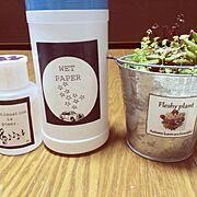 寄せ植え/多肉植物/自作ラベル/デコパージュ…などのインテリア実例
