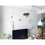 和室/100均/1と0の間にあるもの/亀さん/自然と共に/信じる心…などに関連する他の写真