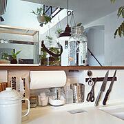 重曹/除菌スプレー/食洗機洗剤/ニッチ/タカラスタンダード キッチン/タカラスタンダード…などのインテリア実例