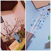 ユーカリの枝/お庭の木/毛糸のポンポン/100均/枝ツリー/My Shelf…などのインテリア実例