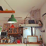 二人暮らし/1LDK/飾り棚/観葉植物/テラリウム/苔…などに関連する他の写真
