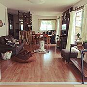 木製棚のインテリア実例写真