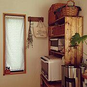 いなざうるす屋さん/観葉植物/リメイク/フェイクグリーン/男前/DIY…などに関連する他の写真