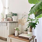 モノトーン/ラベリング/100均/観葉植物/Bathroomに関連する他の写真