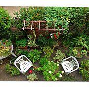 庭の草花/真上から/ガーデンテーブル&チェア/ガーデンフェンス♡/ガーデン雑貨/Overview…などのインテリア実例