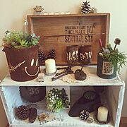 My Shelf/ロハス戦利品/ロボット君がお気に入り/毎日Happyでいたい!/ガーデンピック…などのインテリア実例