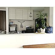ガジュマル/ソングオブジャマイカ/ウォールナット家具/ペンダントライト/こどもと暮らす。…などのインテリア実例