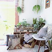 サインペインティング/パパママハウス/ジャーナルスタンダードファニチャー/観葉植物…などに関連する他の写真