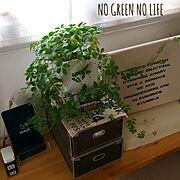 NO GREEN NO LIFE/My Desk…などのインテリア実例