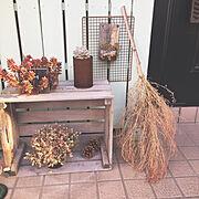 木箱に関連する他の写真
